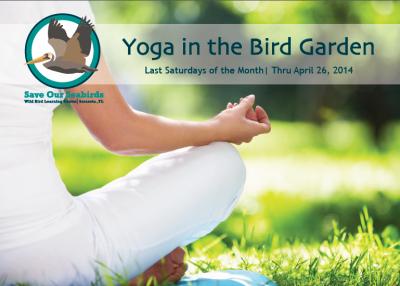 Save Our Seabirds Yoga in the Bird Garden, Sarasota, FL, www.saveourseabirds.org